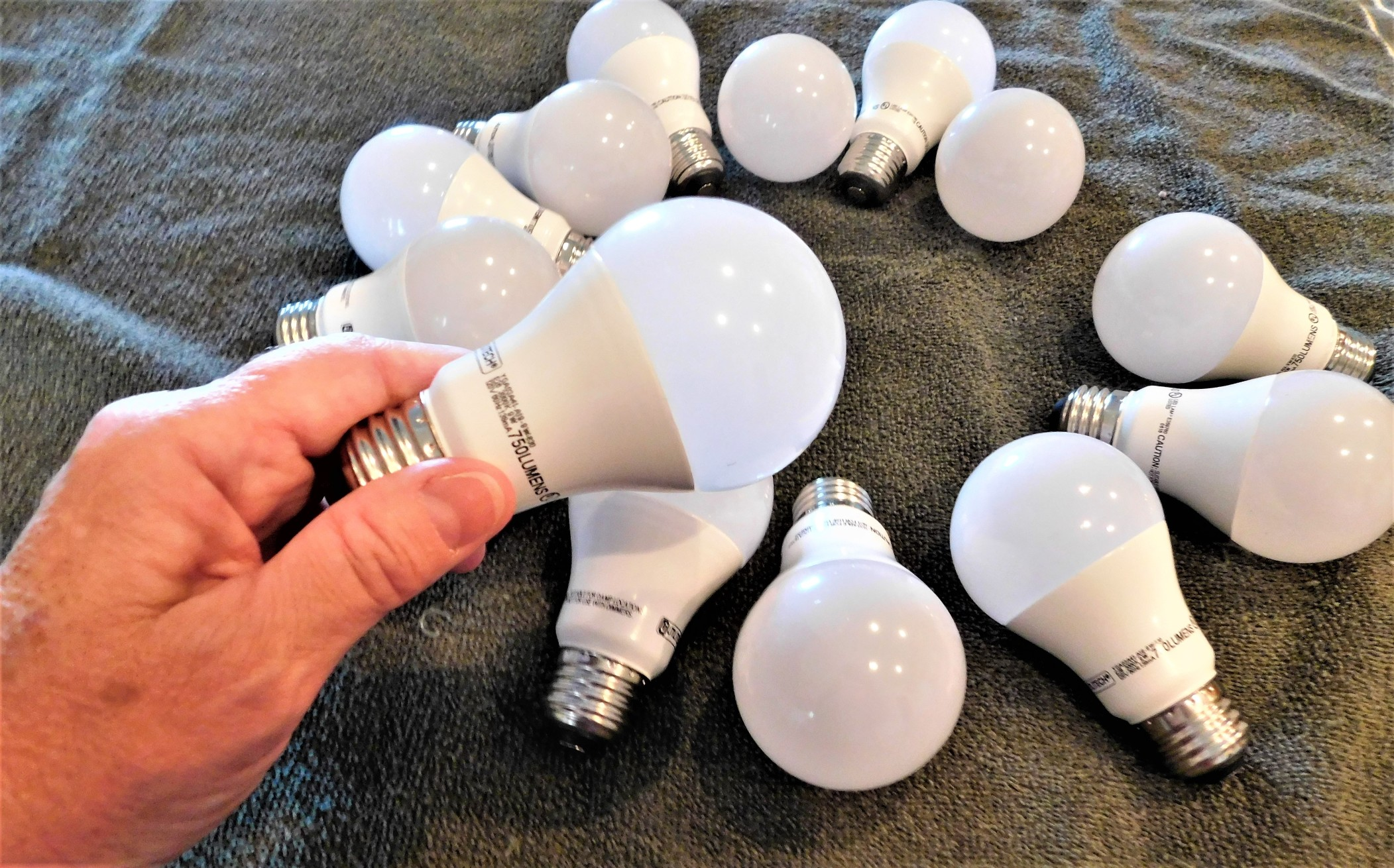 image of light bulbs and a hand holding one