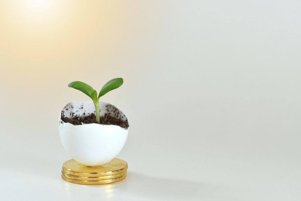 https://watt.co.uk/wp-content/uploads/2020/08/financial-growth-concept-a-sprout-growing-out-of-an-eggshell-on-a-stack-of-gold-coins-growth-business_t20_e97PrW.jpg