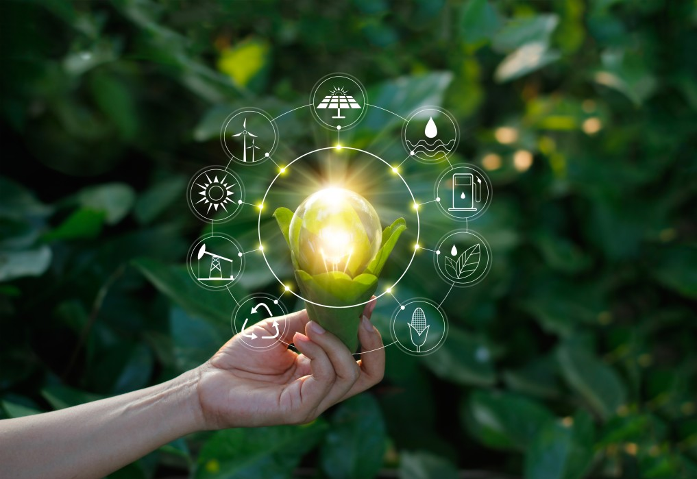 hand-holding-light-bulb-against-nature-on-green-leaf-with-icons-energy-sources-for-renewable